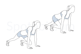 Mountain Climbers | Illustrated Exercise Guide